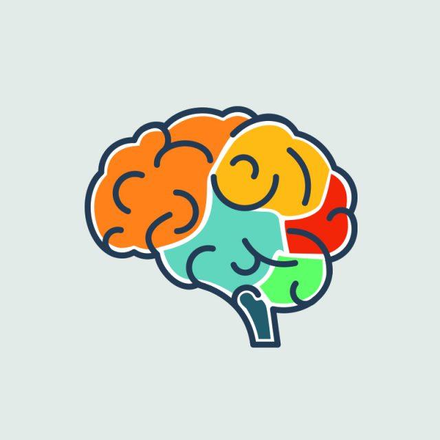 Brain (symptoms) web image